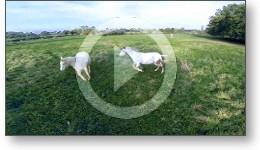 Film vidéo de présentation d'un gîte équestre à partir de vues aériennes depuis un drone