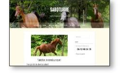 Site web vitrine pour un centre équestre