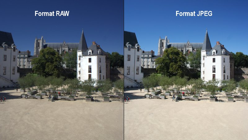 Comparaison format RAW et JPEG en photo