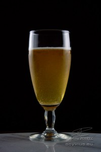 Photo en studio verre de bière