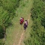 Tournage vidéo avec drone au centre hippique