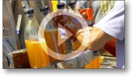 Reportage vidéo sur une journée de pressage de pommes dans le Tarn