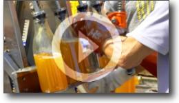 Reportage vidéo sur une journée de pressage de pommes